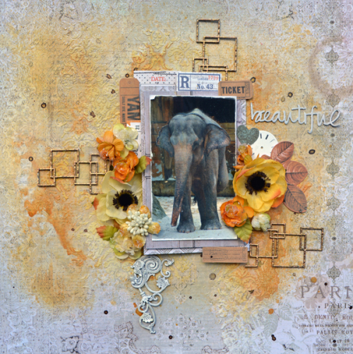 Beautiful-Elephant